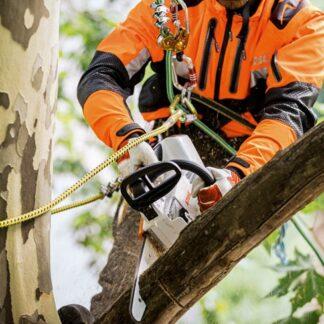 Professional Arborist Chainsaws