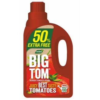 Westland Big Tom